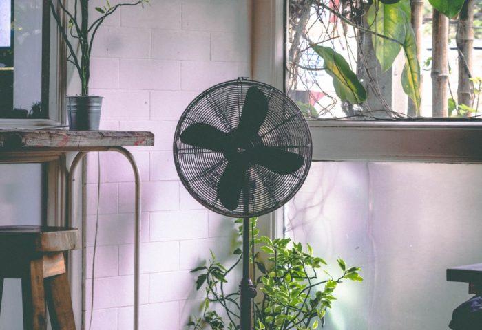 Pedatsal fan in room